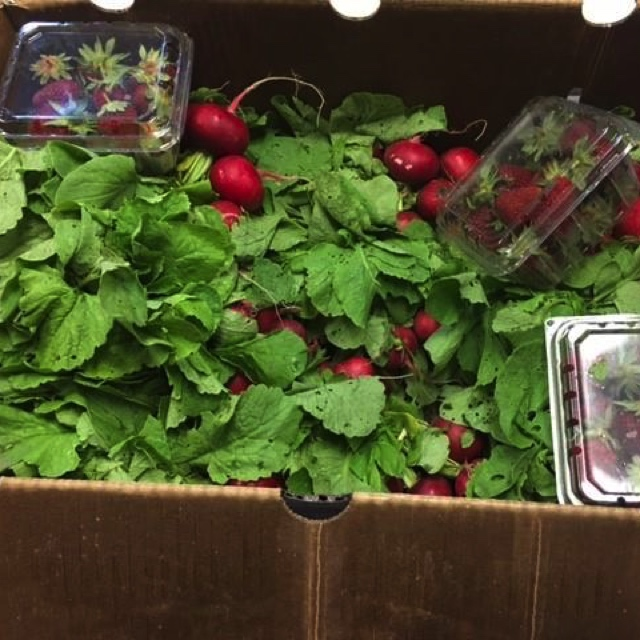 Farms for Life Donation